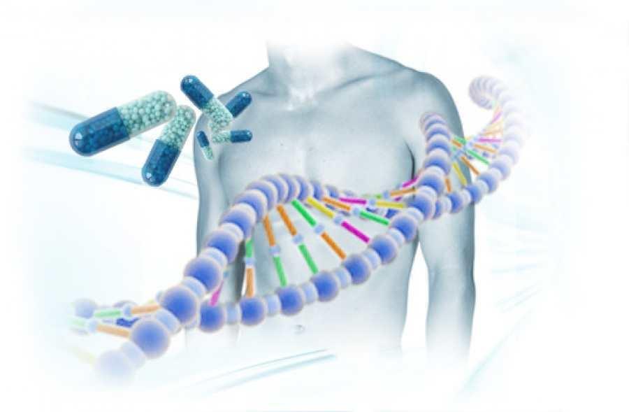 Elea Phoenix, Insud Pharma y Ariana Pharma firmaron un acuerdo de medicina personalizada para pacientes con cáncer de pulmón