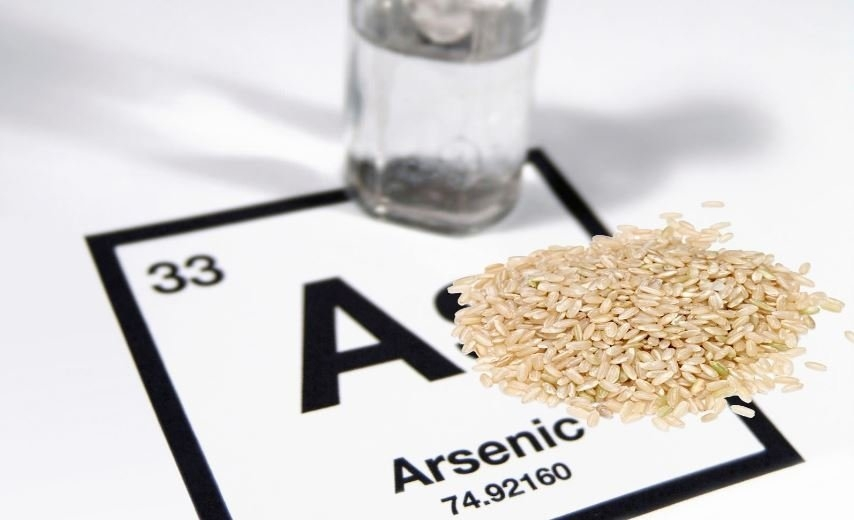 El arsénico, de veneno a posible terapia contra el cáncer